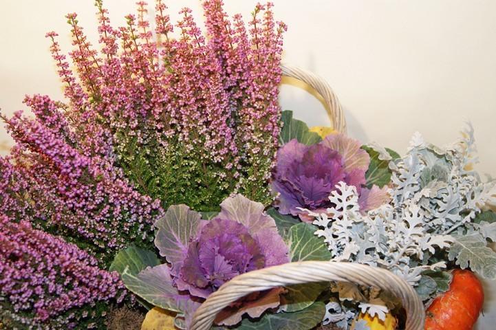 Galleria d arte e fiori composizioni piante genova vendita for Fiori e piante online