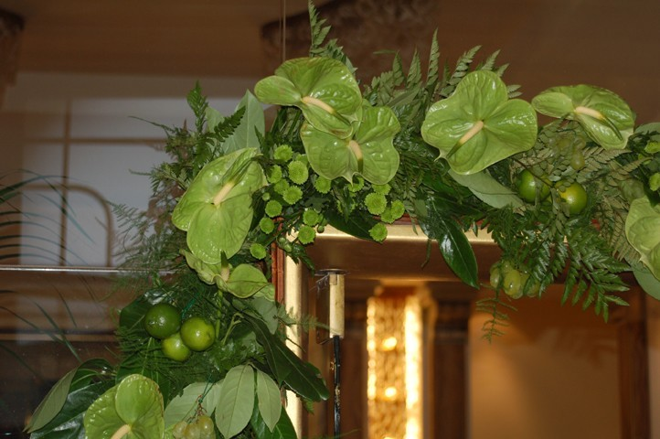Galleria d arte e fiori allestimenti per inaugurazioni for Fiori e piante online