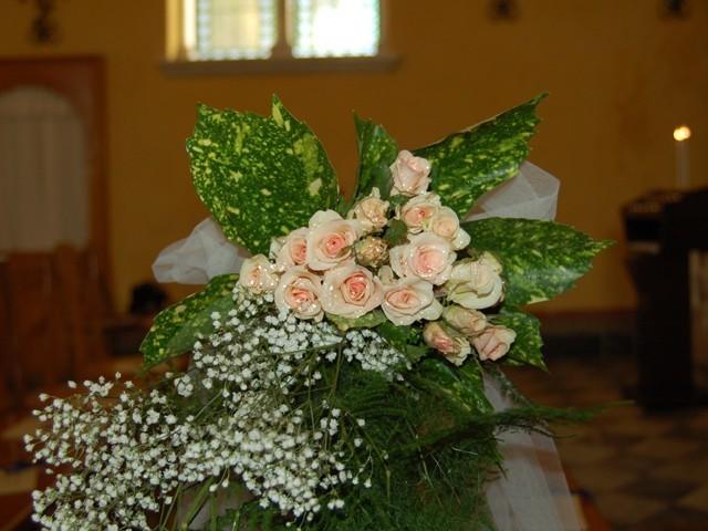 Galleria d arte e fiori chiesa di sant eusebio genova for Fiori e piante online