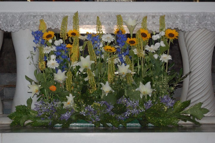 Galleria d arte e fiori chiesa di santo stefano genova for Fiori e piante online
