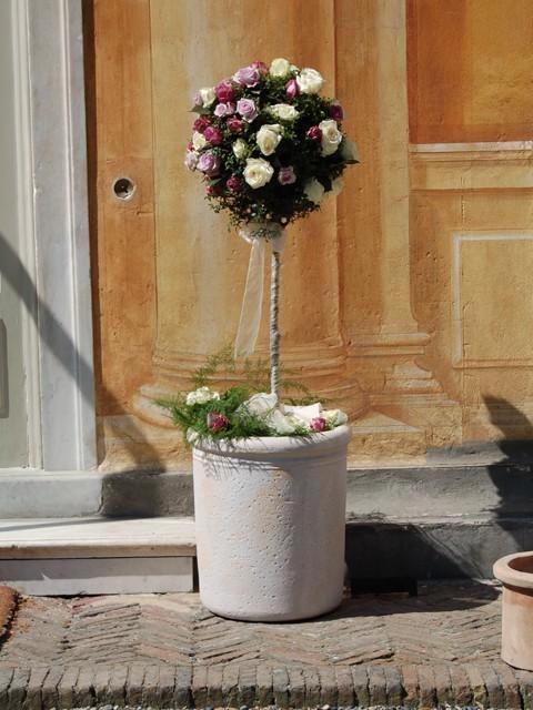 Galleria d arte e fiori allestimento ristoranti genova for Bonsai in vendita online