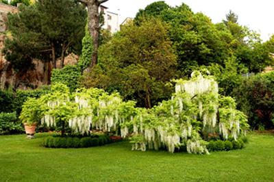 Giardino parco giardini parchi storia paradiso terrestre - Giardini privati progetti ...