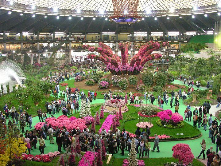 Galleria d arte e fiori artefiori fioristi in genova fiori for Acquisto piante e fiori on line
